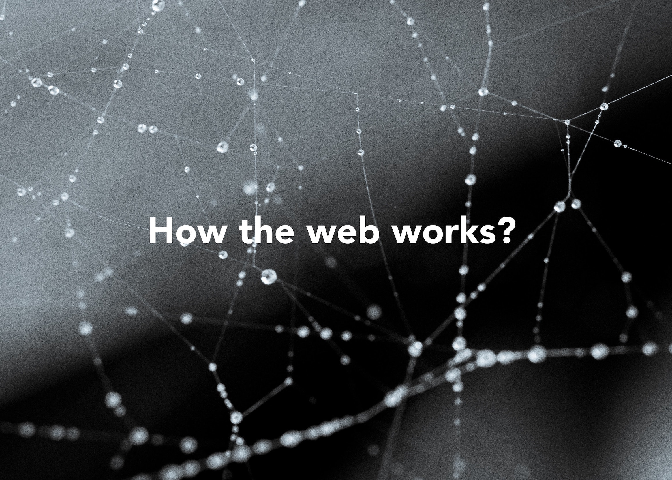 CodeSpace how the web works websites become a dev